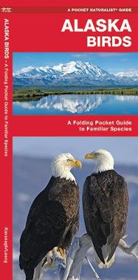 Alaska Birds: A Folding Pocket Guide to Familiar Species - Pocket Naturalist Guide Series