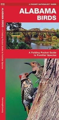 Alabama Birds: A Folding Pocket Guide to Familiar Species - Pocket Naturalist Guide Series