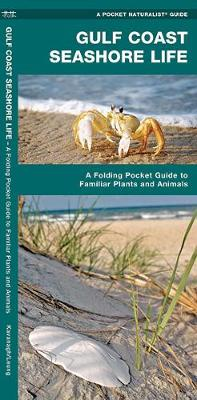 Gulf Coast Seashore Life: A Folding Pocket Guide to Familiar Plants and Animals - Pocket Naturalist Guide Series