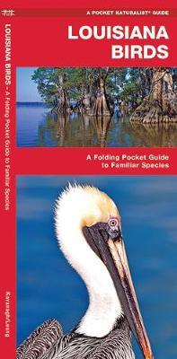 Louisiana Birds: A Folding Pocket Guide to Familiar Species - Pocket Naturalist Guide Series
