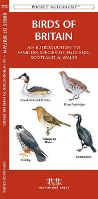 Birds of Britain: A Folding Pocket Guide to Familiar Species of England, Scotland & Wales - Pocket Naturalist Guide Series