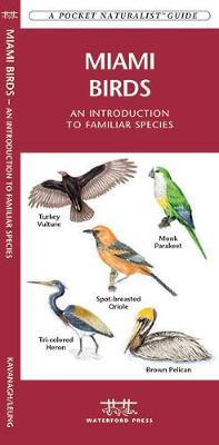 Miami Birds: A Folding Pocket Guide to Familiar Species - Pocket Naturalist Guide Series