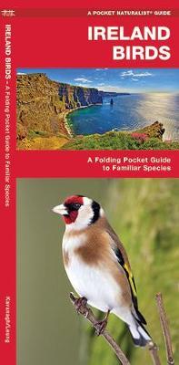 Ireland Birds: A Folding Pocket Guide to Familiar Species - Pocket Naturalist Guide Series