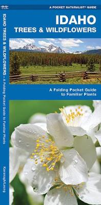 Idaho Trees & Wildflowers: A Folding Pocket Guide to Familiar Species - Pocket Naturalist Guide Series