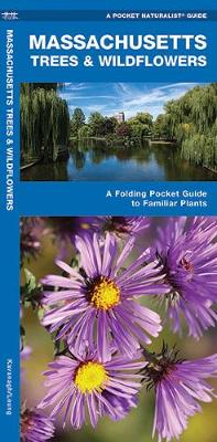 Massachusetts Trees & Wildflowers: A Folding Pocket Guide to Familiar Plants - Pocket Naturalist Guide Series