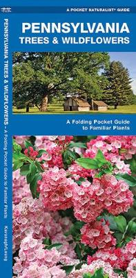 Pennsylvania Trees & Wildflowers: A Folding Pocket Guide to Familiar Plants - Pocket Naturalist Guide Series