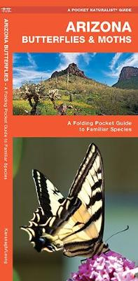 Arizona Butterflies & Moths: A Folding Pocket Guide to Familiar Species - Pocket Naturalist Guide Series