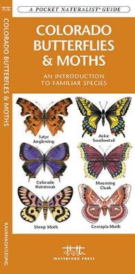 Colorado Butterflies & Moths: A Folding Pocket Guide to Familiar Species - Pocket Naturalist Guide Series