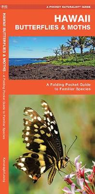 Hawaii Butterflies & Moths: A Folding Pocket Guide to Familiar Species - Pocket Naturalist Guide Series