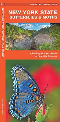 New York State Butterflies & Moths: A Folding Pocket Guide to Familiar Species - Pocket Naturalist Guide Series