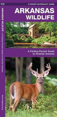 Arkansas Wildlife: A Folding Pocket Guide to Familiar Species - Pocket Naturalist Guide Series