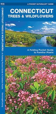 Connecticut Trees & Wildflowers: A Folding Pocket Guide to Familiar Plants - Pocket Naturalist Guide Series