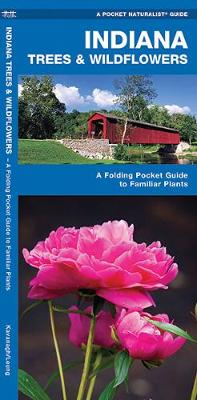 Indiana Trees & Wildflowers: A Folding Pocket Guide to Familiar Species - Pocket Naturalist Guide Series