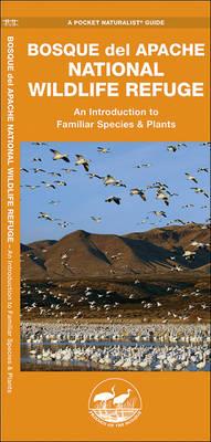 Bosque del Apache National Wildlife Refuge: A Folding Pocket Guide to Familiar Species & Plants - Pocket Naturalist Guide Series