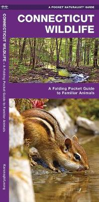 Connecticut Wildlife: A Folding Pocket Guide to Familiar Species - Pocket Naturalist Guide Series