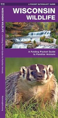 Wisconsin Wildlife: A Folding Pocket Guide to Familiar Animals - Pocket Naturalist Guide Series