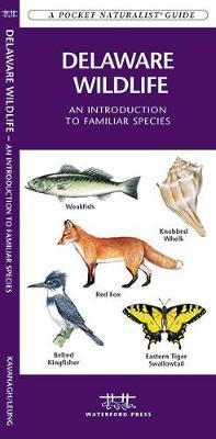 Delaware Wildlife: A Folding Pocket Guide to Familiar Species - Pocket Naturalist Guide Series