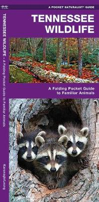 Tennessee Wildlife: A Folding Pocket Guide to Familiar Species - Pocket Naturalist Guide Series