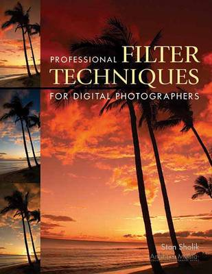 Professional Filter Techniques For Digital Photographers (Paperback)