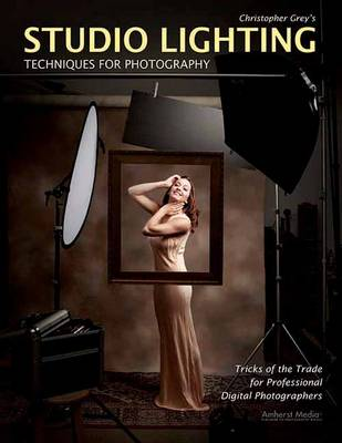 Studio Lighting Techniques For Photography: Tricks of the Trade for Professional Digital Photography (Paperback)