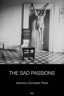 The Sad Passions - Semiotext(e) / Native Agents (Paperback)