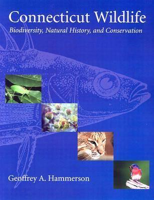 Connecticut Wildlife (Paperback)