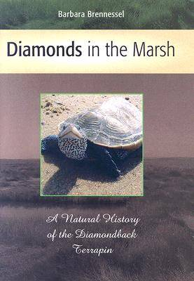 Diamonds in the Marsh: A Natural History of the Diamondback Terrapin (Hardback)