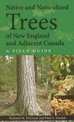 Native and Naturalized Trees of New England and Adjacent Canada (Paperback)