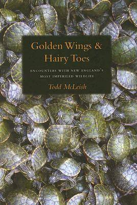 Golden Wings & Hairy Toes (Hardback)