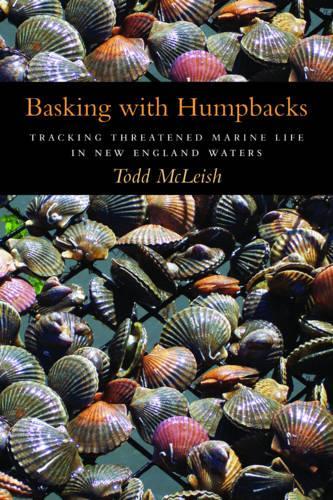 Basking with Humpbacks (Hardback)