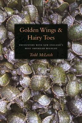 Golden Wings & Hairy Toes (Paperback)