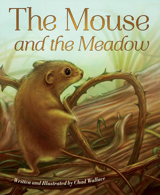 Mouse and the Meadow (Hardback)
