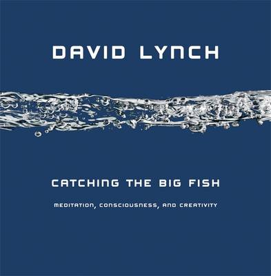 Catching the Big Fish: Meditation, Consciousness and Creativity (Hardback)