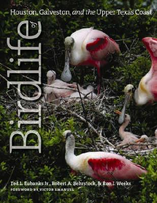 Birdlife of Houston, Galveston, and the Upper Texas Coast - Gulf Coast Studies (Hardback)