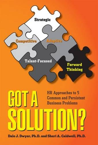 Got a Solution?: HR Approaches to 5 Common and Persistent Business Problems (Paperback)