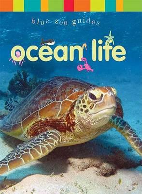 Ocean Life (Hardback)