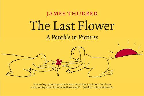 The Last Flower: A Parable in Pictures (Hardback)