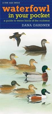Waterfowl in Your Pocket: A Guide to Water Birds of the Midwest - Bur Oak Guide (Book)