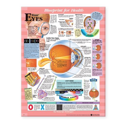 Blueprint for Health Your Eyes Chart (Wallchart)