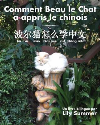 Comment Beau Le Chat a Appris Le Chinois: Un Livre Bilingue (Paperback)