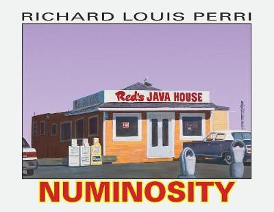 Numinosity: Photographs, Paintings & Text (Paperback)