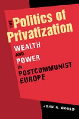 The Politics of Privatization: Wealth and Power in Postcommunist Europe (Hardback)