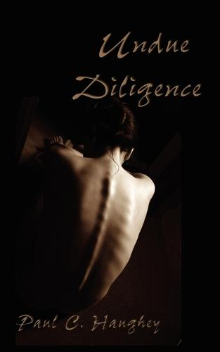 Undue Diligence (Paperback)