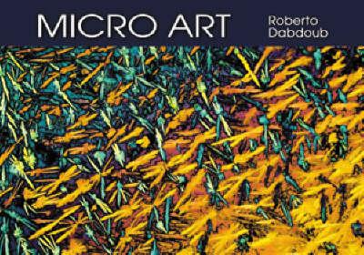 Micro Art (Hardback)