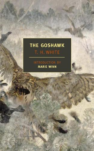 The Goshawk (Paperback)