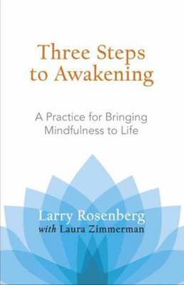 Three Steps To Awakening (Paperback)