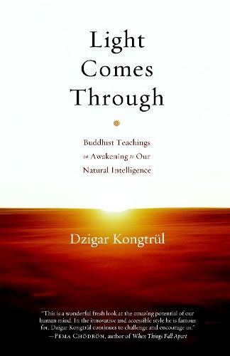 Light Comes Through (Paperback)