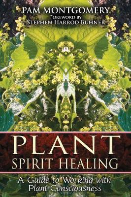 Plant Spirit Healing: A Guide to Working with Plant Consciousness (Paperback)