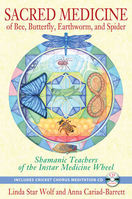 Sacred Medicine of Bee, Butterfly, Earthworm, and Spider: Shamanic Teachers of the Instar Medicine Wheel (Paperback)