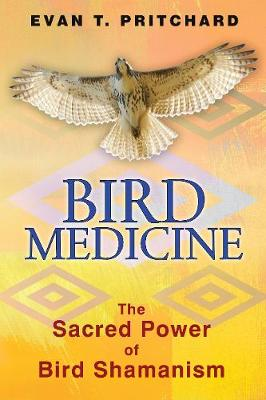 Bird Medicine: The Sacred Power of Bird Shamanism (Paperback)